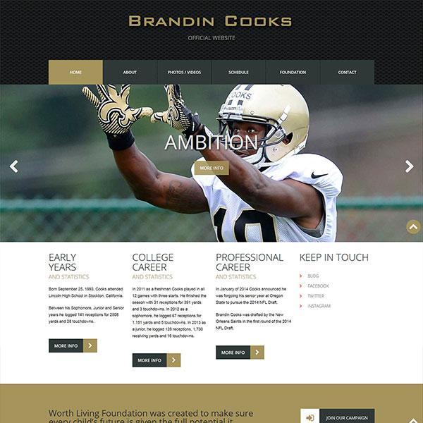 Website Design Portfolio 2