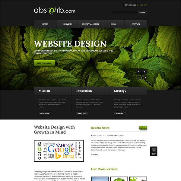 Website Design Portfolio 10
